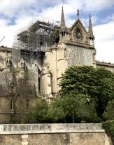 wade in paris (13)